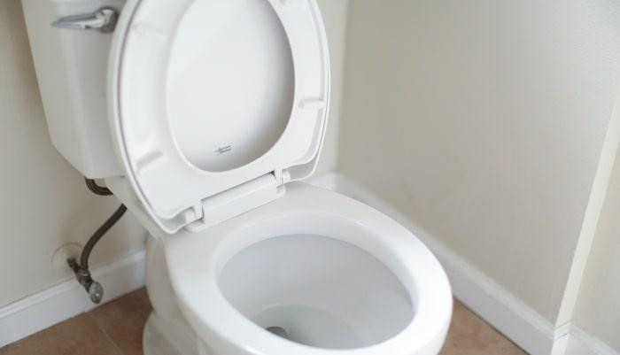 インナーボール トイレのとき